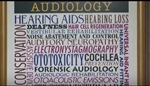 Audiologists....What We Do?